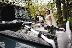 Graceful wedding couple background b