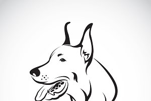 Vector of a dog head. Pet. Animal.