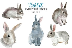 Watercolor Rabbit Clipart