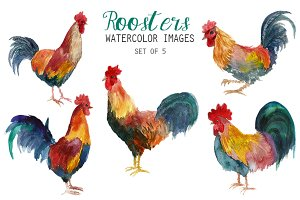 Watercolor Roosters Clipart