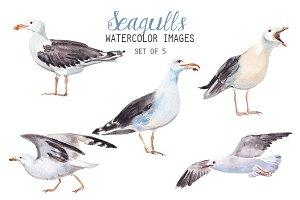 Watercolor Seagulls Clipart