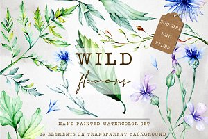 Hand painted watercolor clip art