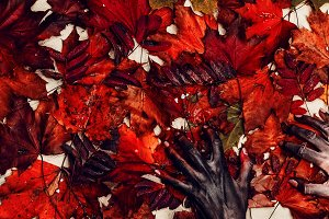 Halloween, scary hands. autumn leave