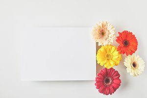 top view of blank card and beautiful