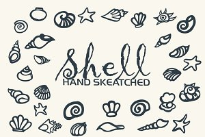 Shell ClipArt - Vector & PNG