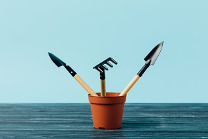 close up view of gardening tools in