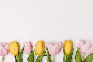 flat lay with pink and yellow tulips