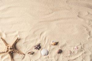 Starfish and sea shells on sandy bea