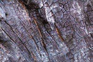 close-up view of old dark burned woo