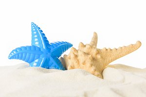 Toy and real starfish in sand isolat