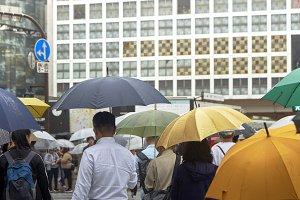 Man with umbrella walking