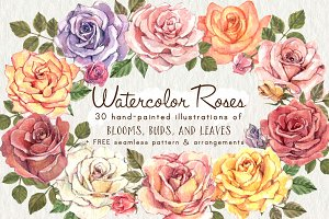 Watercolor Roses Flower Clip Art