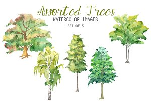 Watercolor Assorted Trees Clipart
