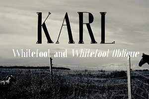 Karl Whitefoot