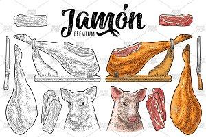 Pig head, jamon leg on horizontal