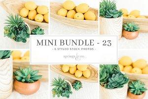 Lemons Mini Styled Photo Bundle