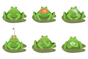 Green Frogs Characters Set. Vector