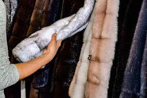 The girl touches the fur on the fur