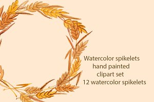 Watercolor spikelets, raster