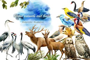 Forest deer and birds watercolor