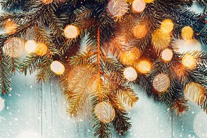 Christmas fir branches with bokeh