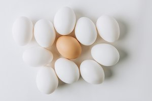 white eggs and one brown laying on w