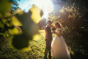 bride and groom on background summer