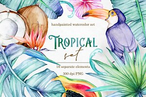Tropical clip art - Cold colors