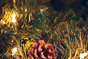 Lights and pine cone on Xmas tree
