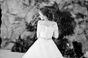 Portrait of back of beautiful bride