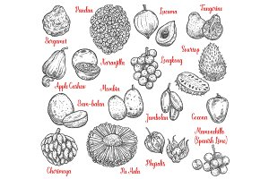 Exotic fruits and tropical berries