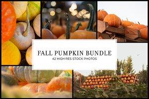 Fall Pumpkin Stock Bundle
