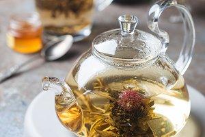 Blooming tea flower