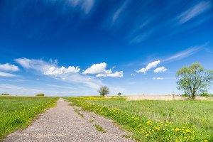 Blue sky over vanishing footpath