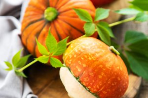 Colorful autumn pumpkins