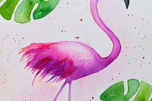 Watercolor pink flamingo and tropica