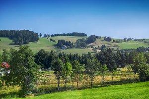 landscape of Black Forest