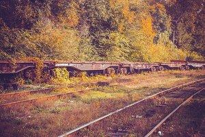 autumn and rails