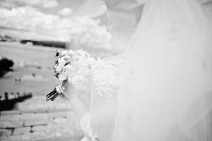 Cheerfull brunette bride with long v