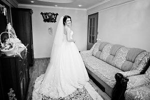 Elegance brunette bride posed at her