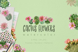 Cactus flowers watercolor set