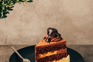 piece of delicious cake with chocola