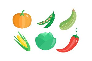 Collection of vegetables, pumpkin