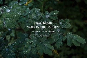 "Bundle ""Rain in the Garden"""