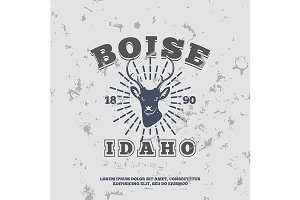 Boise, Idaho.  t-shirt graphic