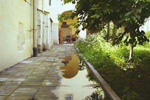 Quiet green street after rain
