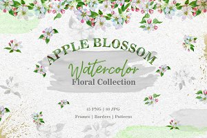 Apple blossom PNG watercolor set