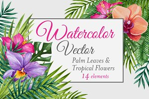 Vector Watercolor Tropical set