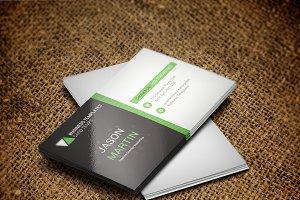 Modern & Professional Business Card