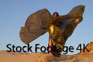 Oriental beauty dance with wings